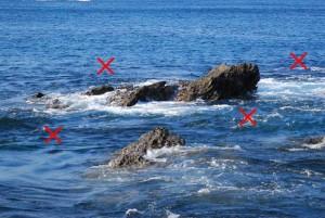 海苔メジナのポイント