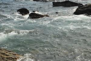 メジナが釣れる潮の色